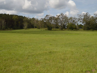 Seminole land for sale