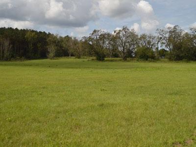 Seminole land for sale